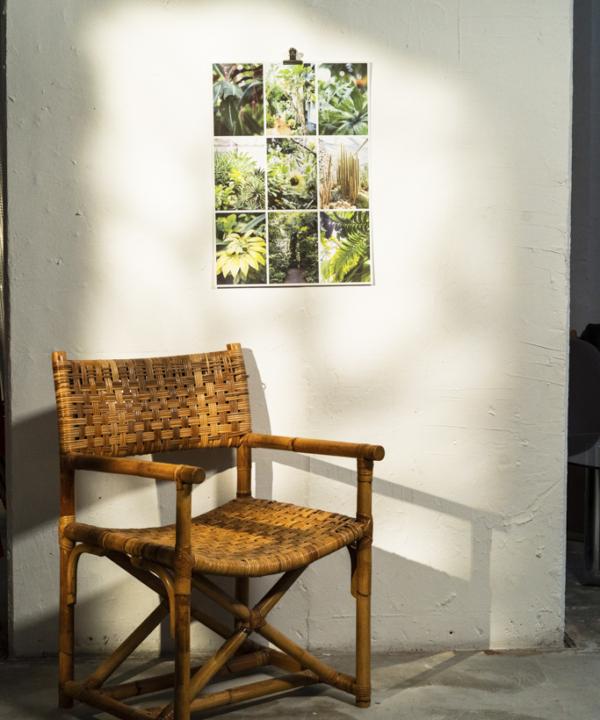 """Poster-Limitierter-Fotodruck: """"Botanischer-Garten-Hamburg-Tropengewächse-Schaugewächshäuser-Planten-un-blomen-Loki-Schmidt"""" im Ain't No Trash Studio an der Wand mit Stuhl in der Sonne"""