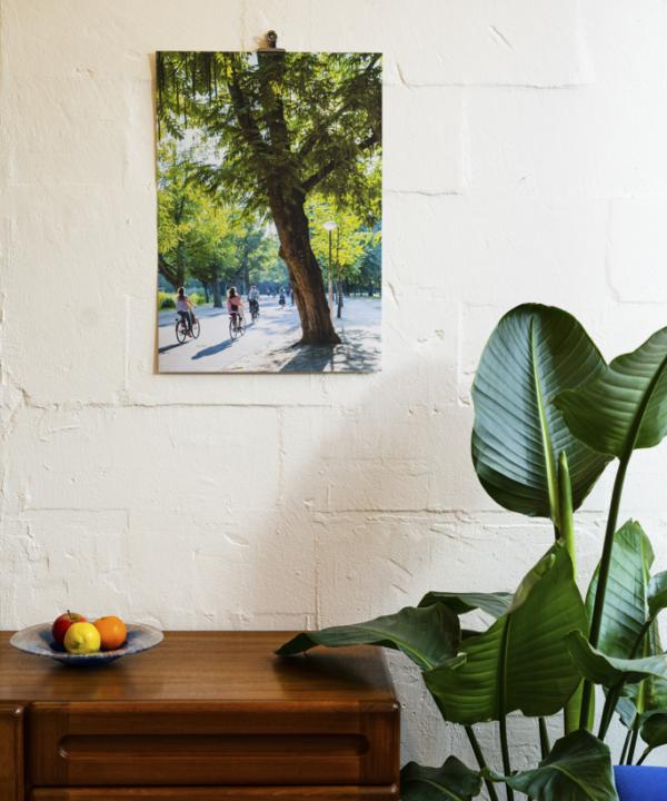 """Fietsen Amsterdam"": Ankerwechsel-Verlag-Limitierter-Fotodruck-Ain't-No-Trash-Studio"