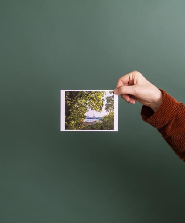 Ankerwechsel Verlag Postkarte Elbe vor grünem Hintergrund mit Hand